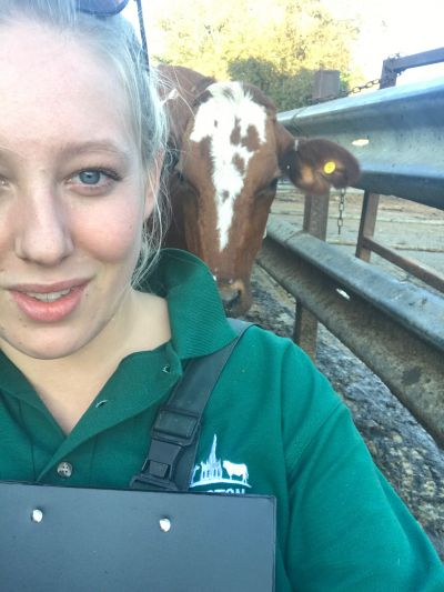 Why working alone as a Farm Vet is really all about teamwork.