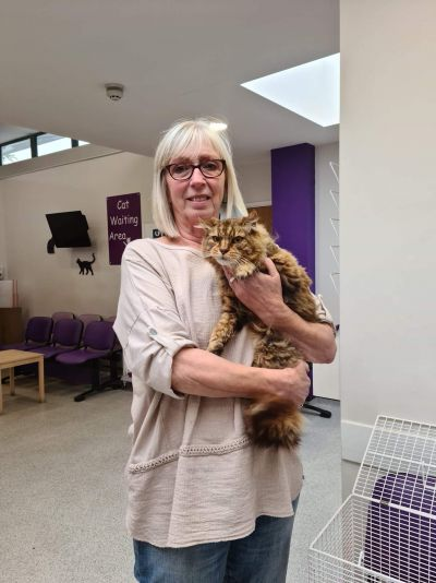 Missing cat reunited after 6 years!