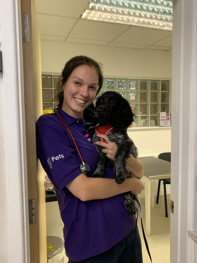 A new graduate vet in a Covid world